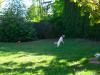 bildschirmfoto-2012-05-17-um-19-41-42